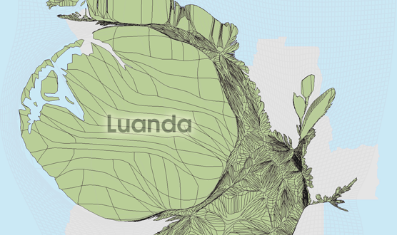 Gridded Population Cartogram Angola